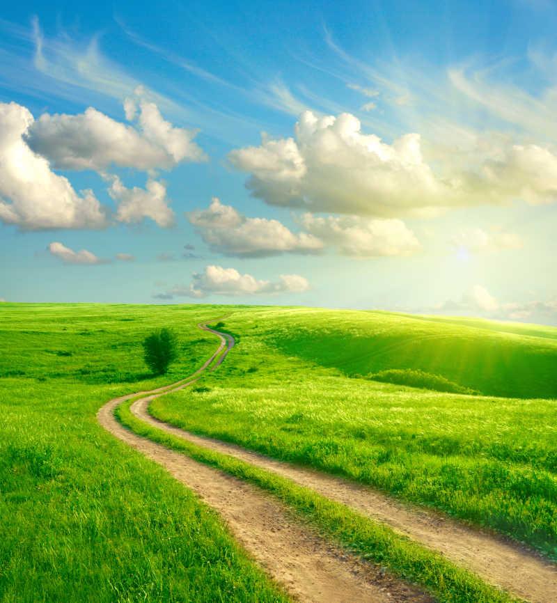 美丽的大自然田园风光