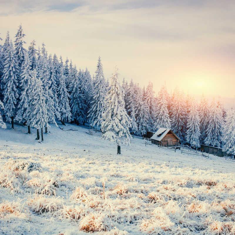 阳光下冬季的山和木屋