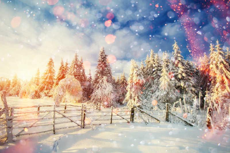 冬季降雪的美景