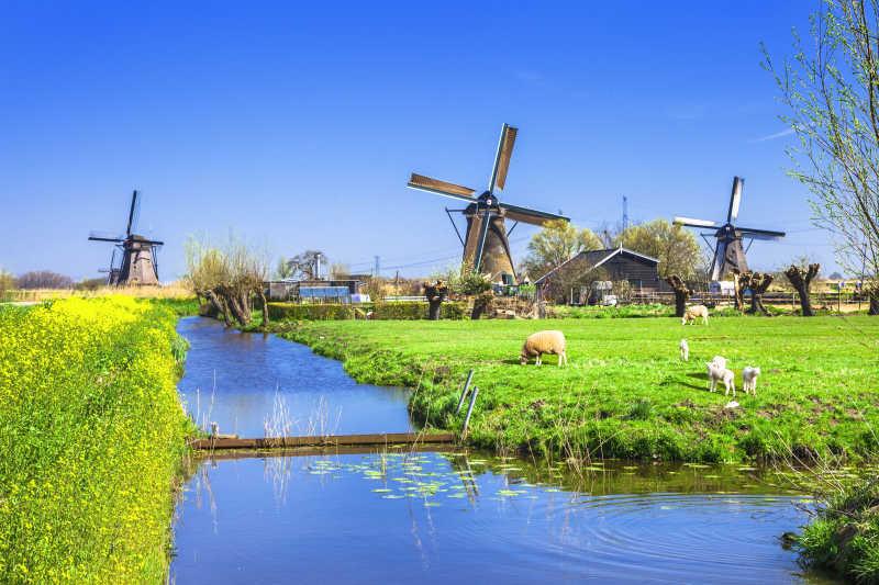 传统的荷兰农村风车
