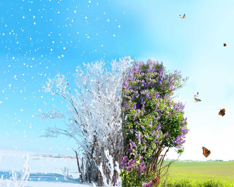 冬季与春季的对比