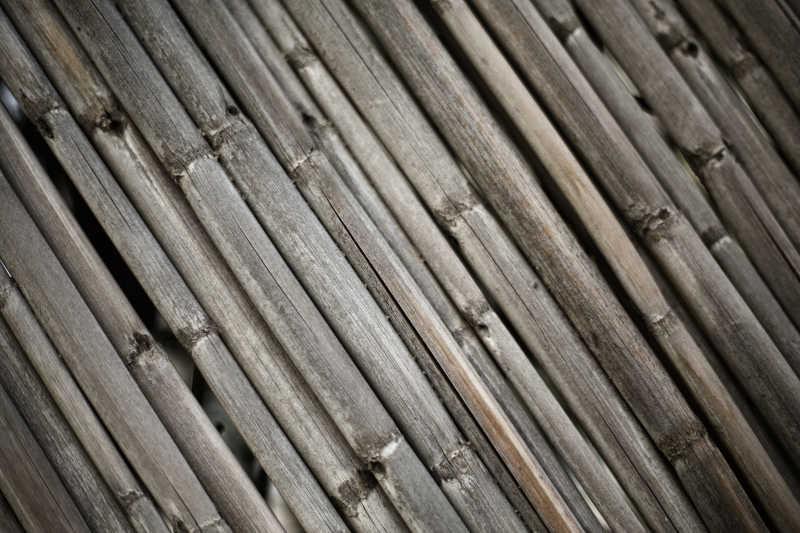 旧竹子的背景