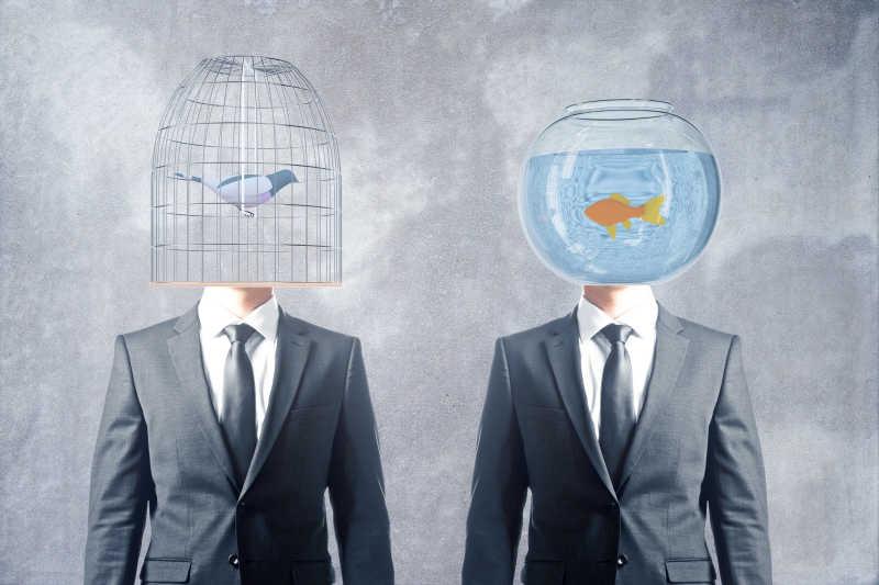 鸟笼和鱼缸做脑袋的两个商人