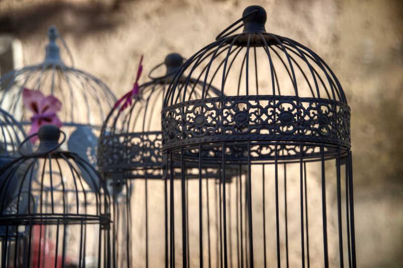 铁质鸟笼子