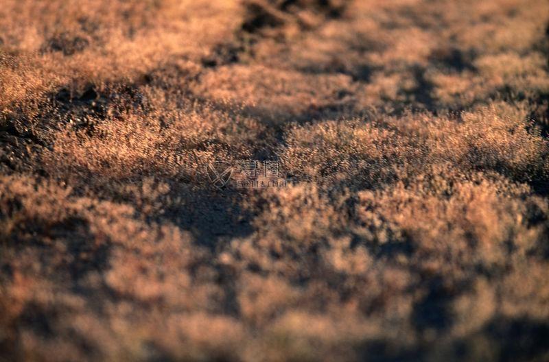 土壤的纹理