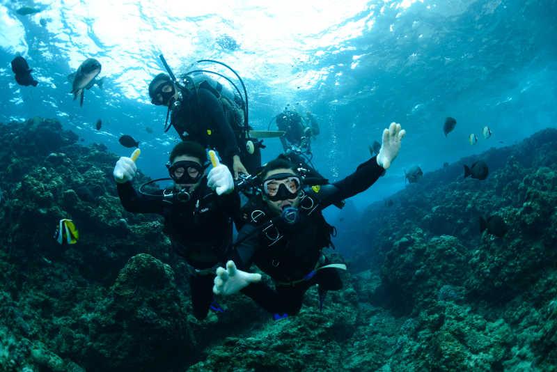 珊瑚区潜水的潜水员