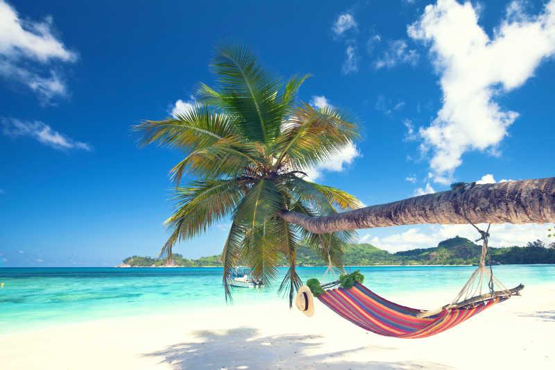 热带海滩上倾斜的棕榈树吊床