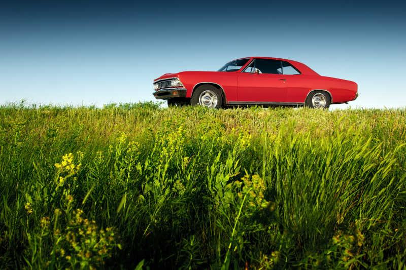 日落时分在绿色草地上的红色汽车