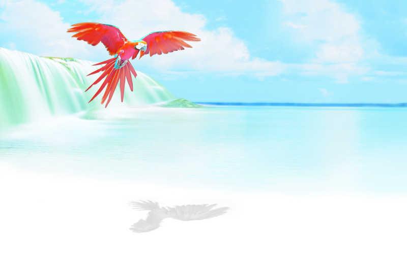 瀑布和红鹦鹉