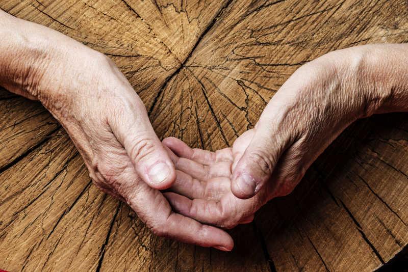 老人的手和古老的树木特写