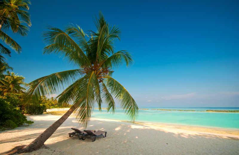 环境优美的热带海滩