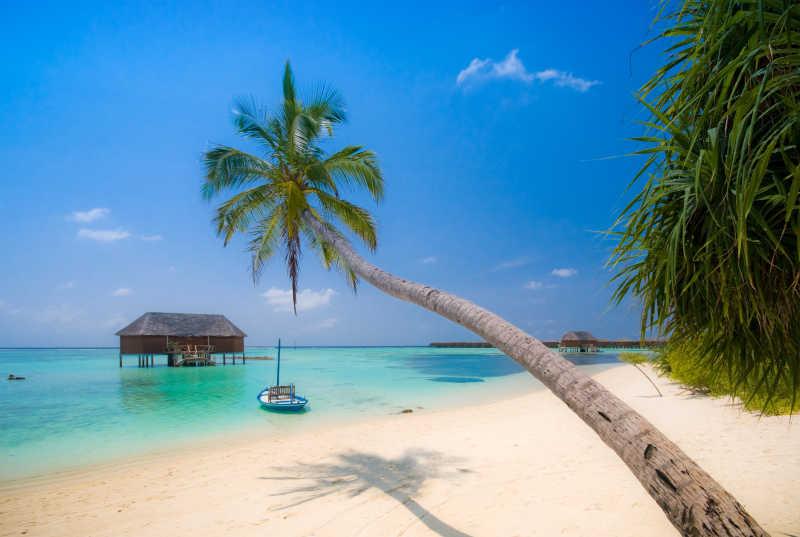 热带岛屿度假村