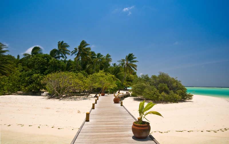 热带海滩上的木制走廊