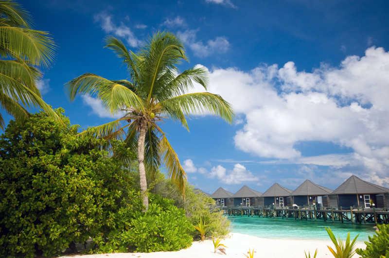 热带海滩上的水上别墅