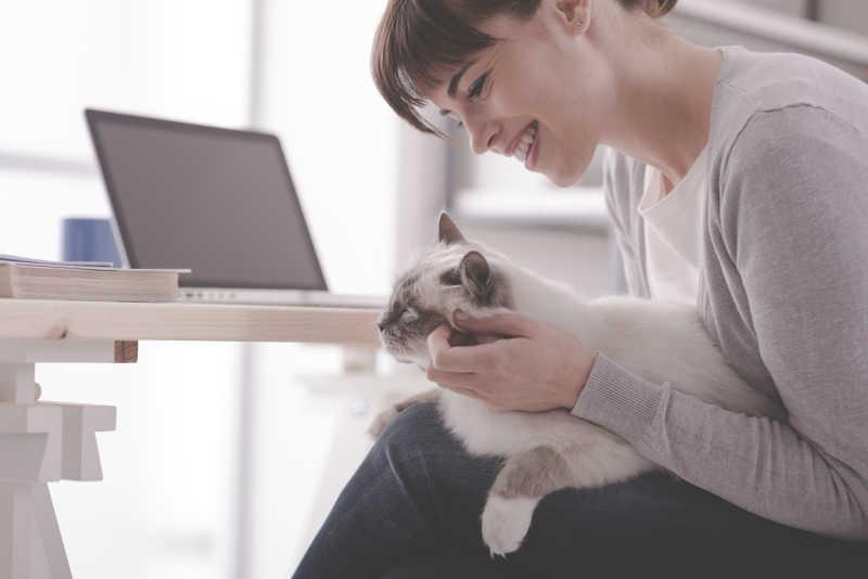 正和猫玩耍的美女
