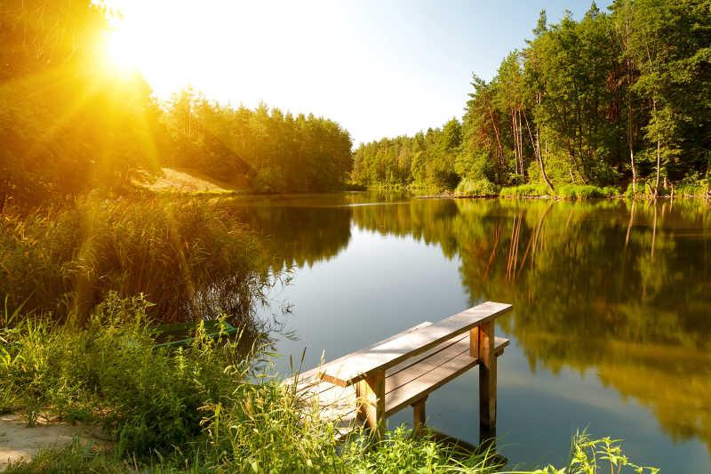 森林湖泊夏季景观