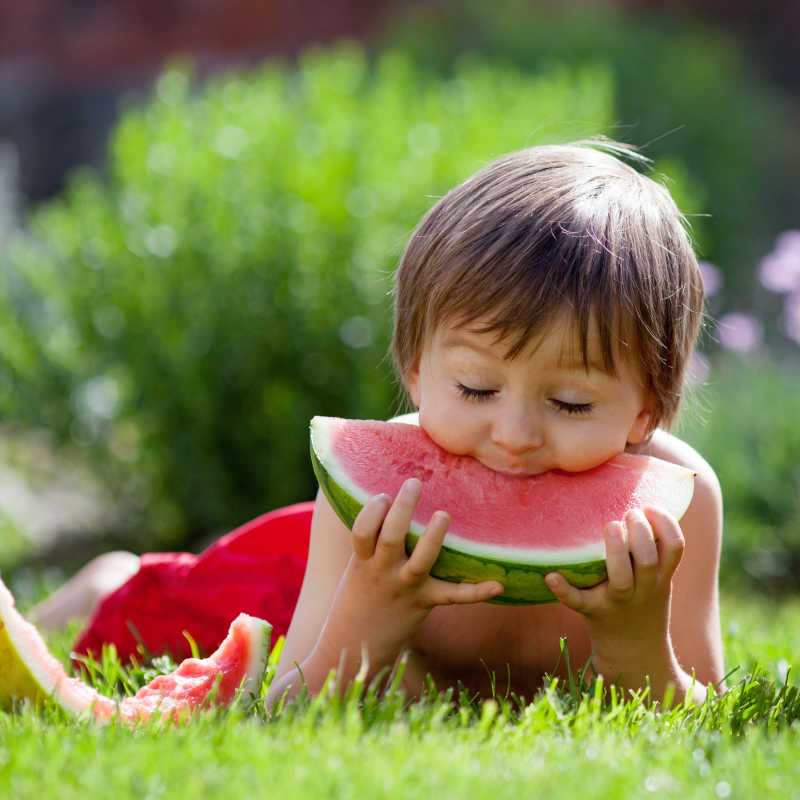 草地上可爱的吃西瓜的小男孩