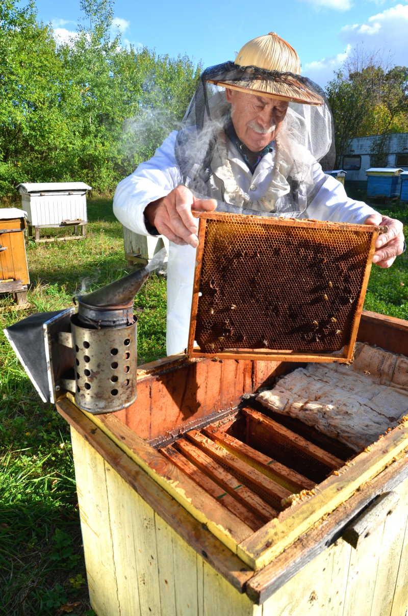 养蜂人在蜂场工作