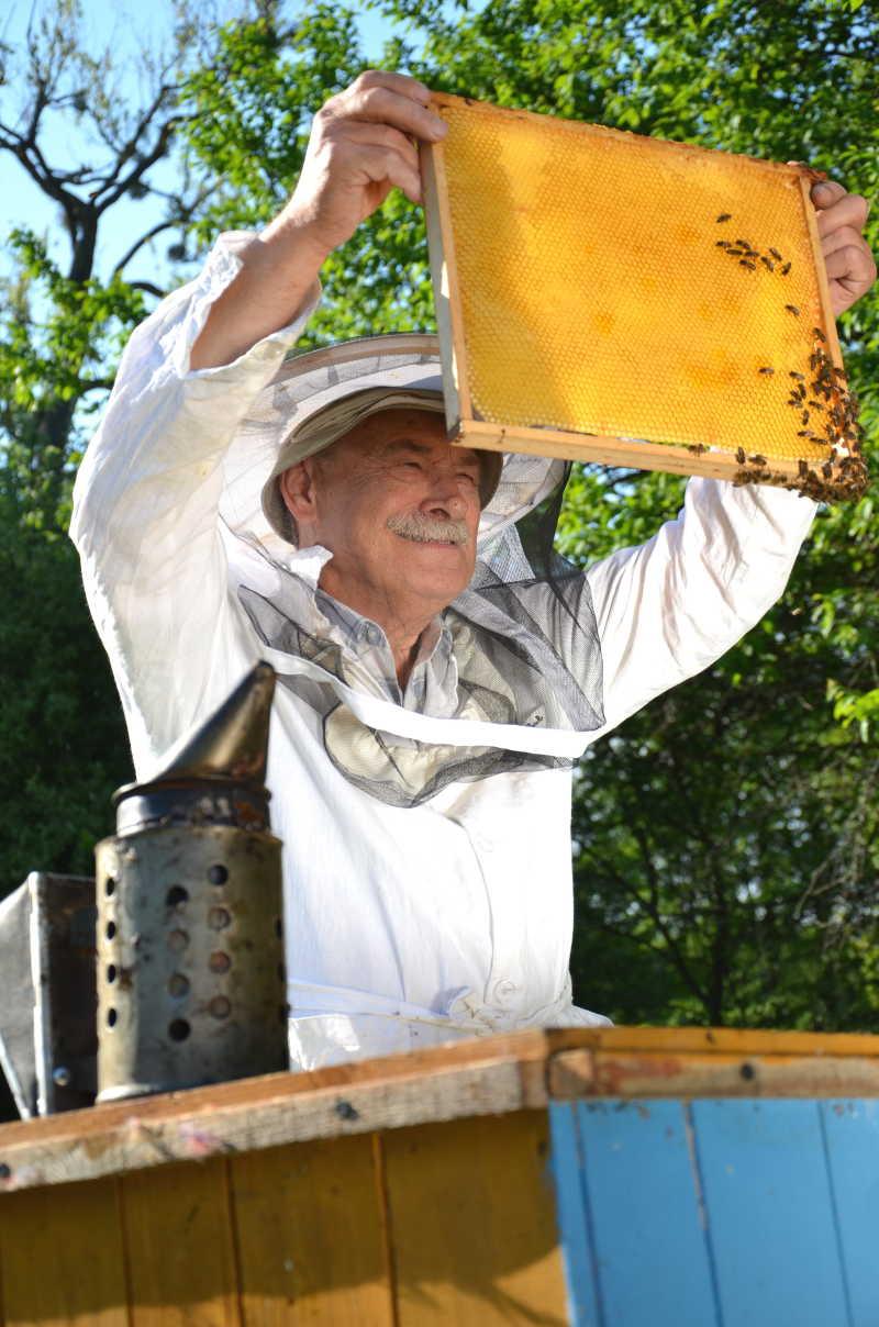 微笑的养蜂人在蜂场工作