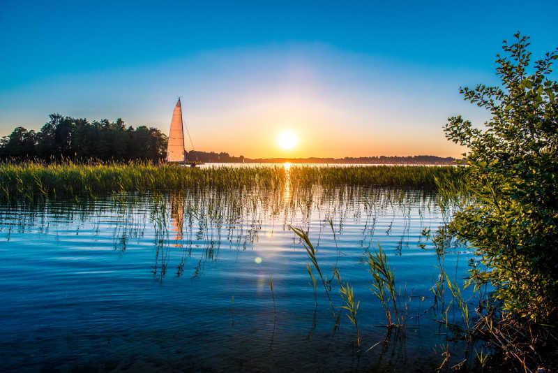 日落时分长满芦苇的湖泊