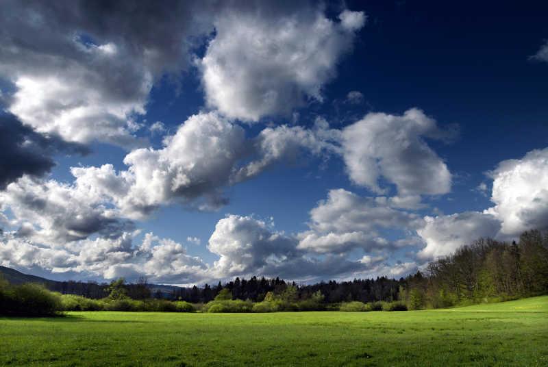 蓝天下的草原和森林