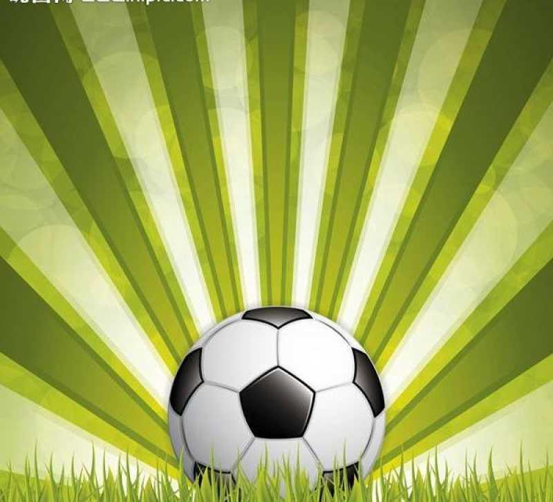 绿色草坪上的足球矢量