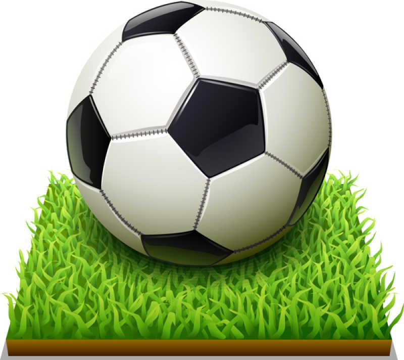一块草坪上的足球矢量