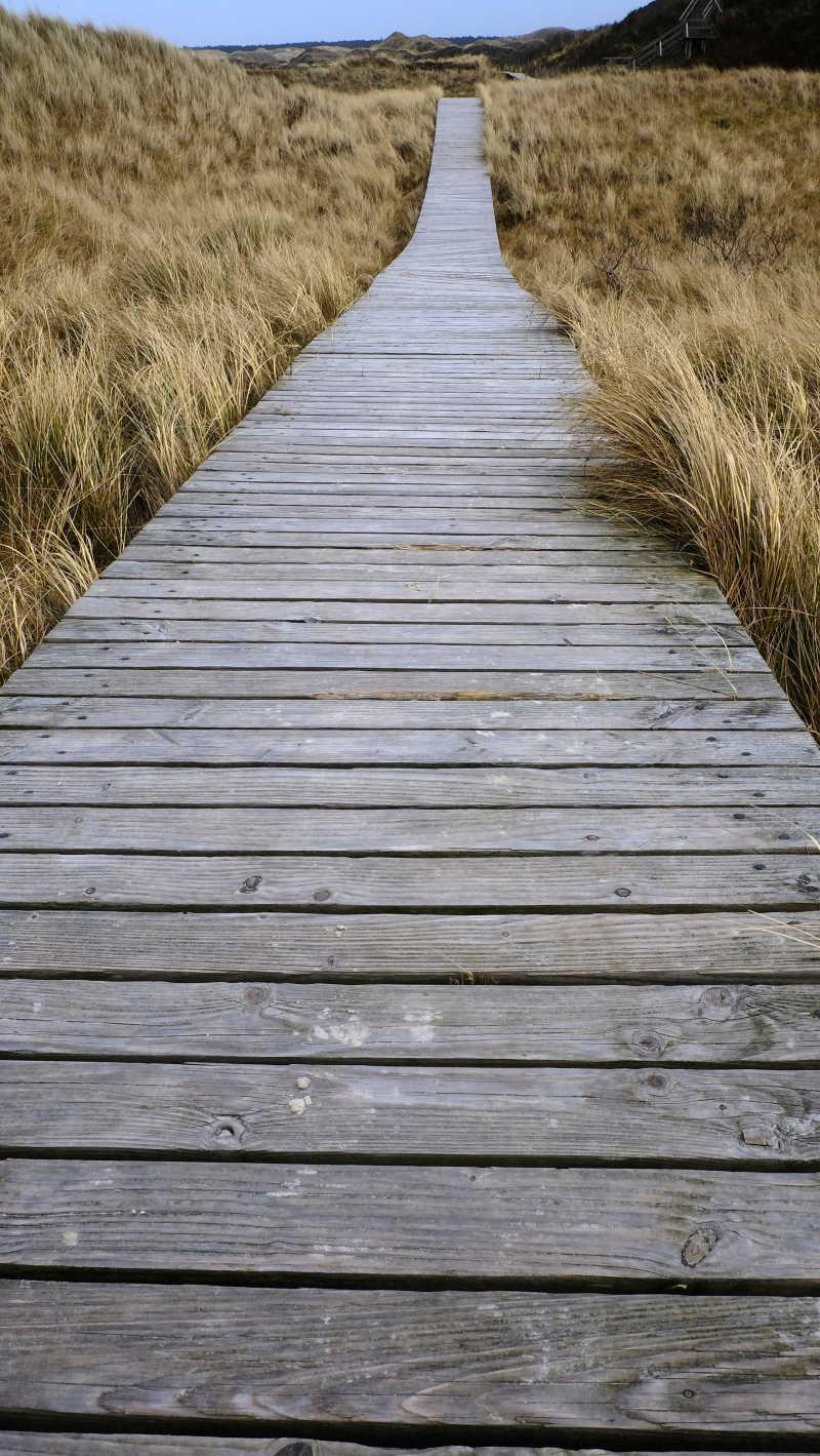 木桥平整的桥面
