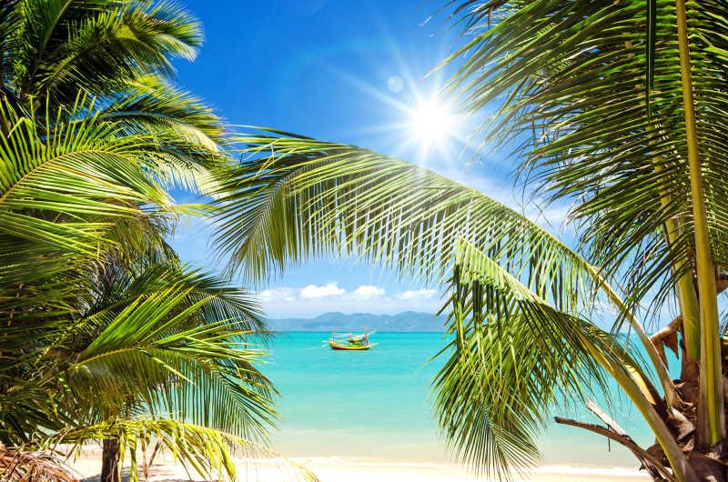 阳光明媚的热带海滩
