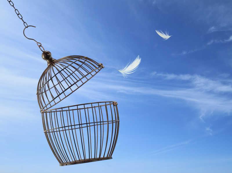 蓝天中打开的笼子