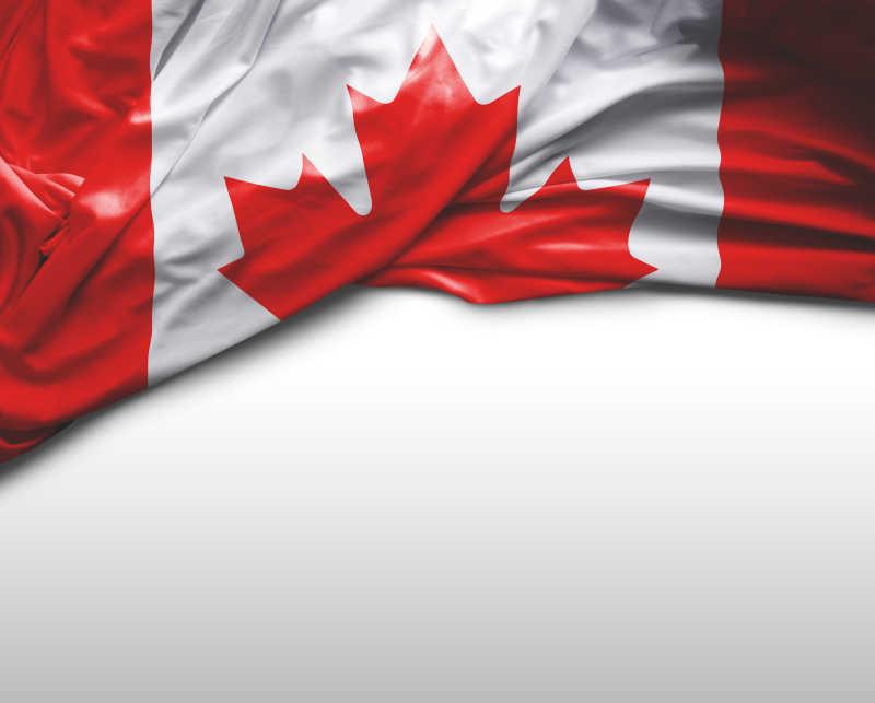 白色背景上加拿大国旗