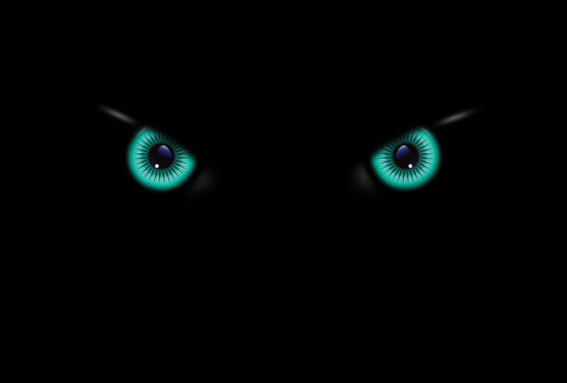 黑暗中的漂亮眼睛