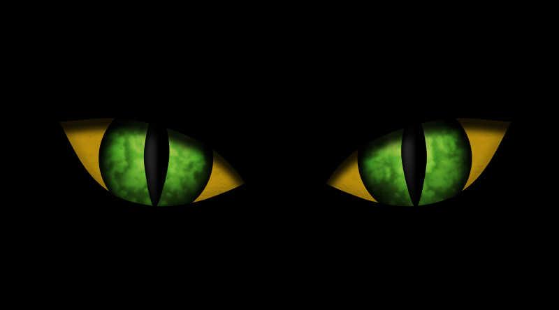 黑色背景下的猫眼