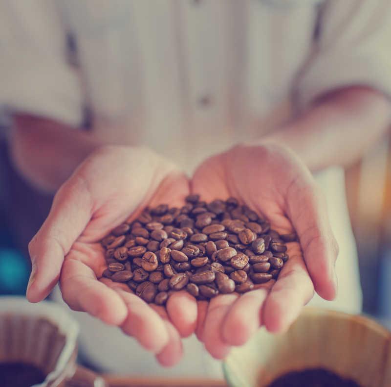 手里的咖啡豆
