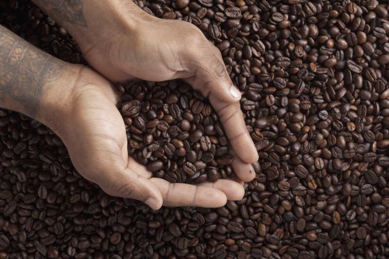 一捧咖啡豆
