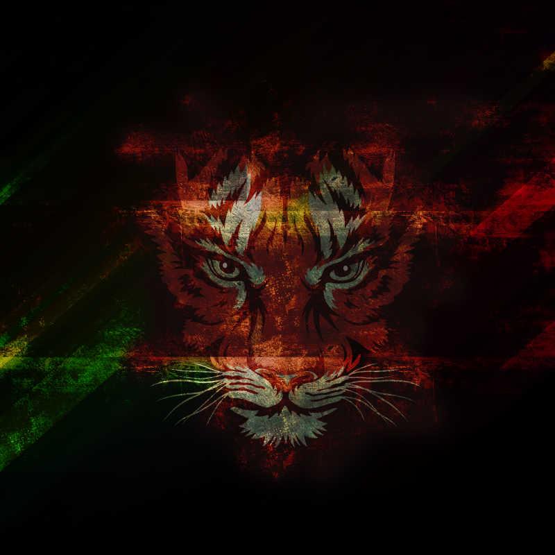 黑色背景中的老虎绘画