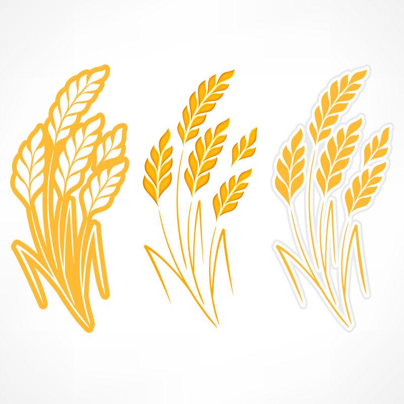 矢量的金黄色麦穗插画