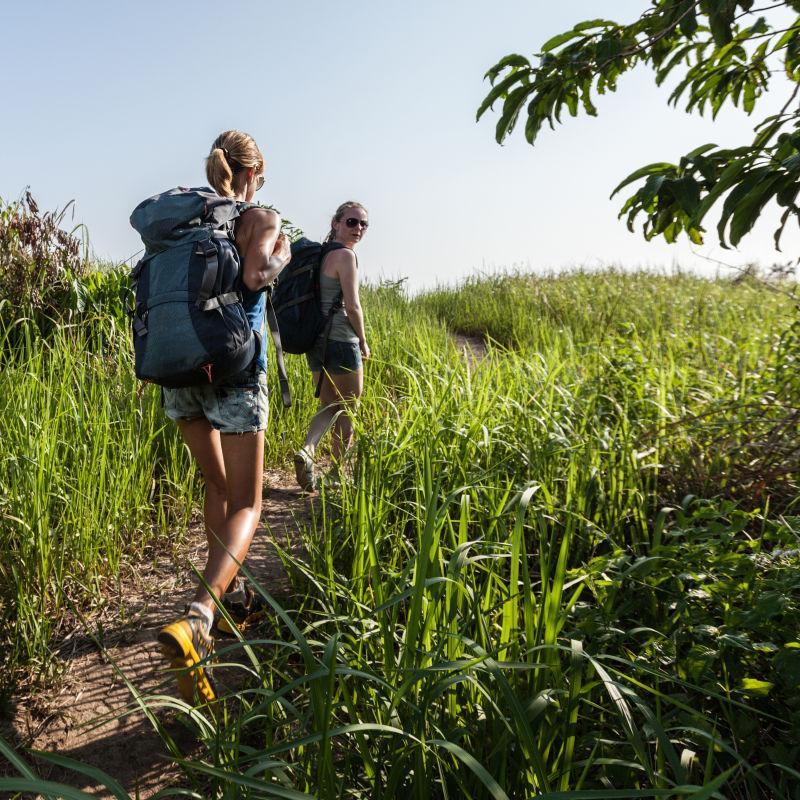 田间的两名徒步旅行者