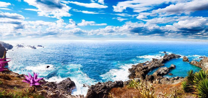 加那利群岛海洋景观