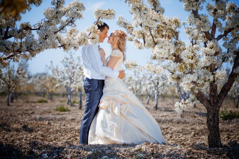 田园里亲吻的夫妇