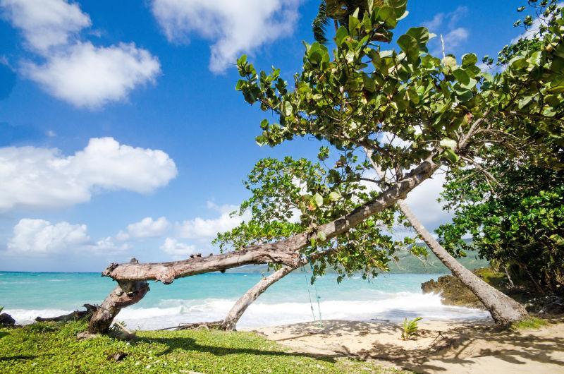 在美丽的加勒比度假休息