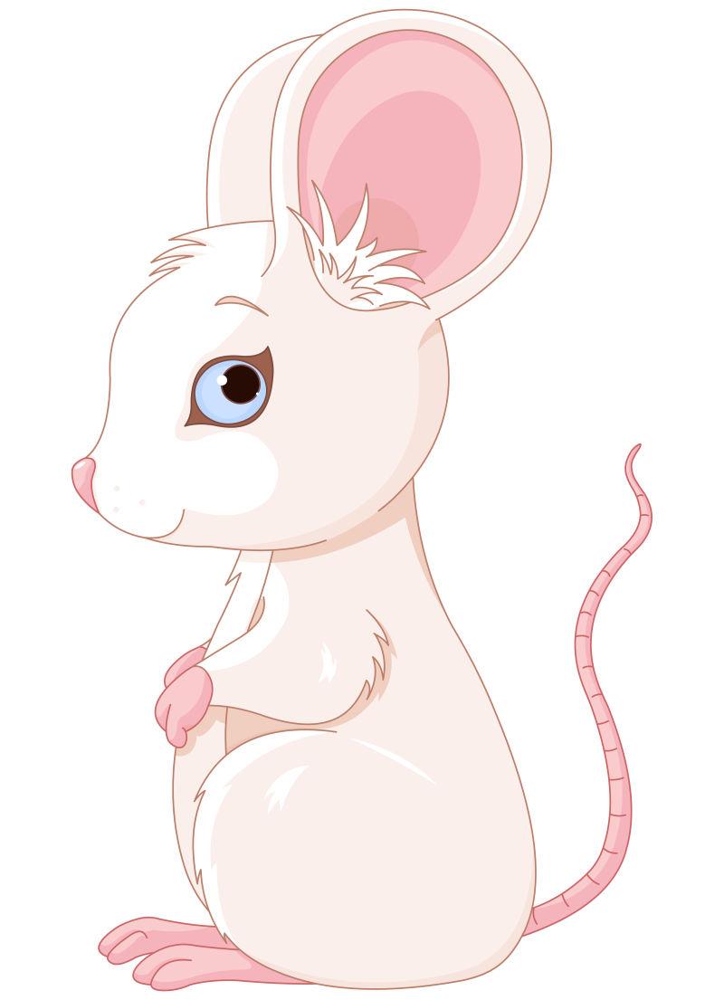 矢量的可爱小白鼠