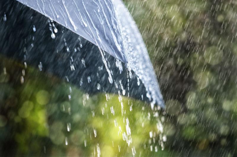 雨中的雨伞