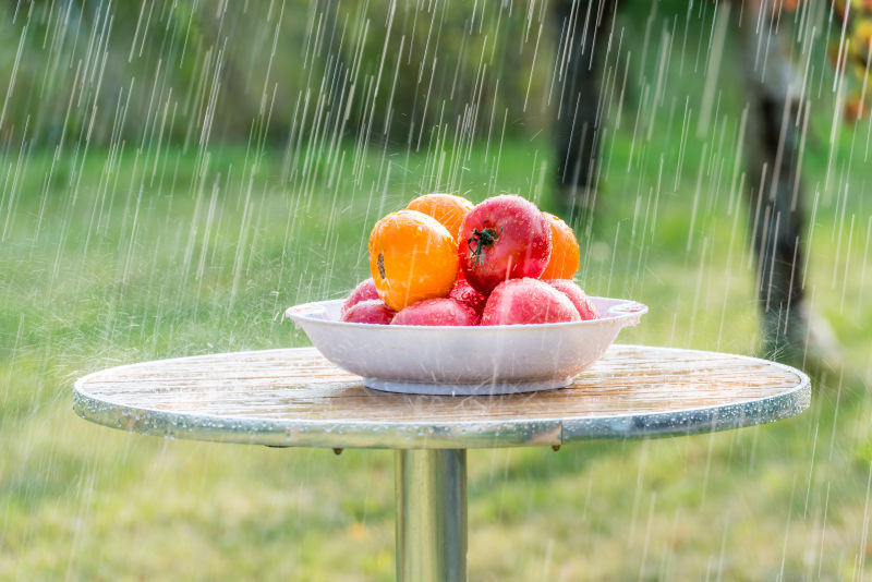 下雨时放在室外桌子上的一盘西红柿