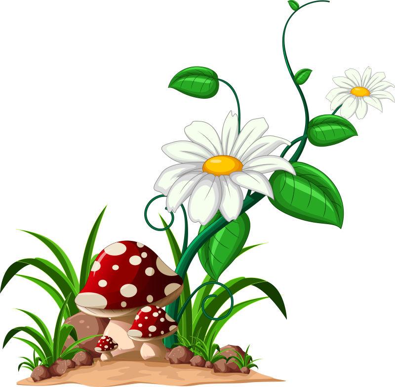 花园里的蘑菇矢量插图