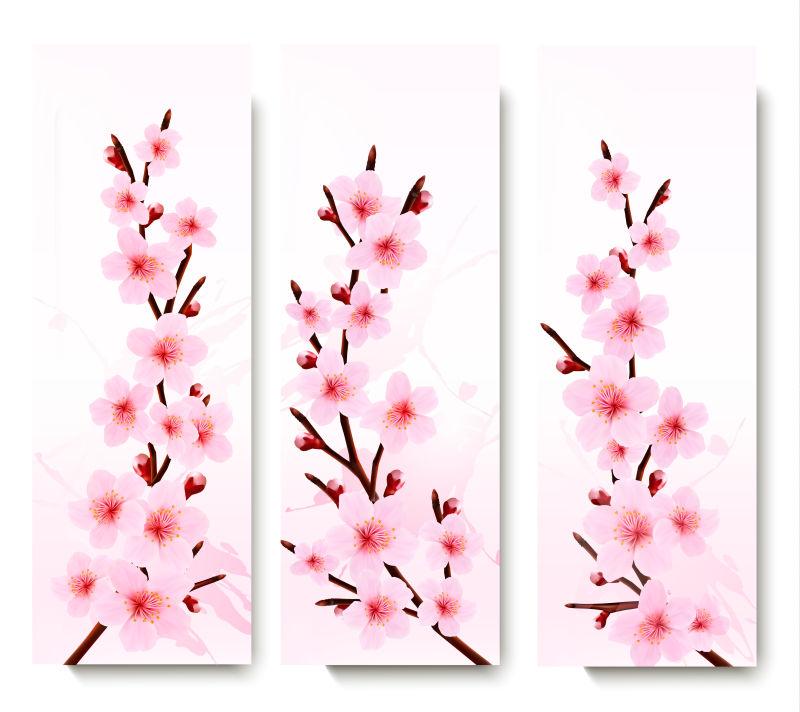 矢量的樱花图案条幅