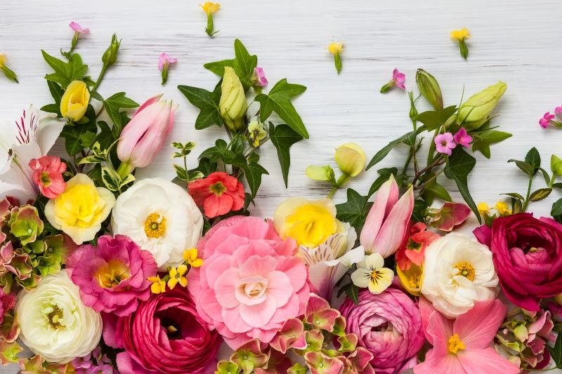 五颜六色的鲜花