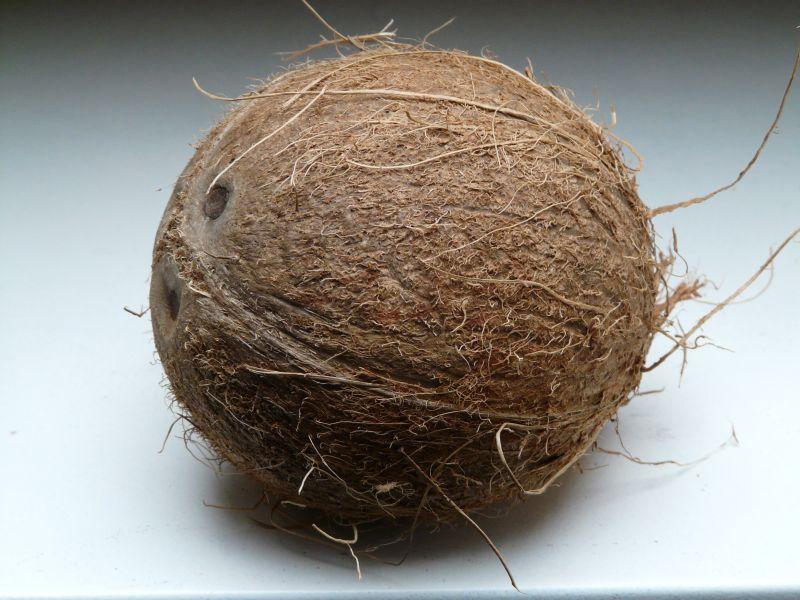 白色平台上的椰子