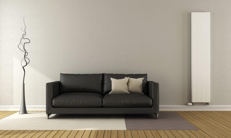 灰色背景下的简约现代风格客厅里的黑色沙发