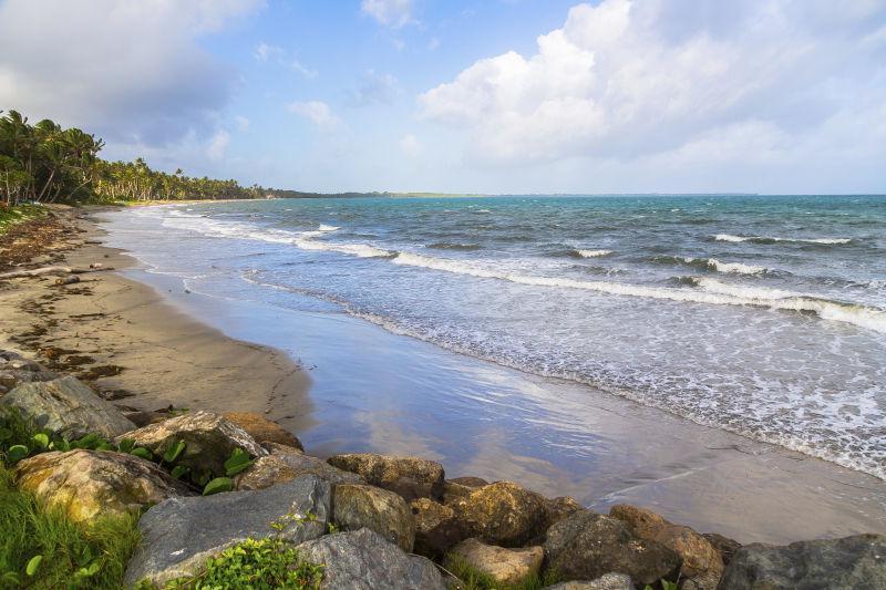 美丽的海滩与椰子树